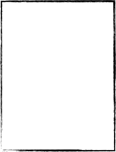Wedding DVD